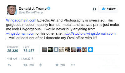 Photograph - I Made It To Donald Trump Tweet Of Shame by Wingsdomain Art and Photography