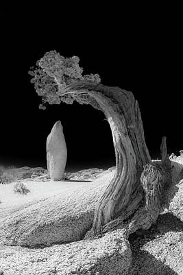 Photograph - I Make You Look Small False Infrared by Scott Campbell