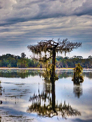 Photograph - I Miss The Rains Down In Acadiana by Kimo Fernandez