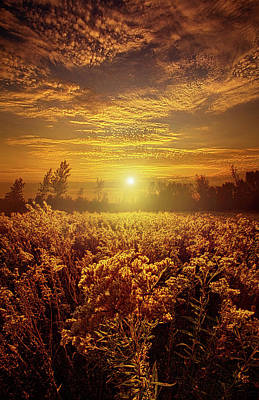 Photograph - I Never Dreamed by Phil Koch