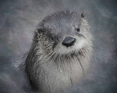 Photograph - I Otter Be In Pictures by Teresa Wilson