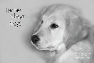 Puppy Digital Art - I Promise To Love You Always by Cathy  Beharriell