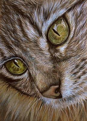Art Print featuring the drawing I See by Heidi Kriel