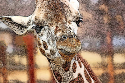 Photograph - I See You by Pennie  McCracken