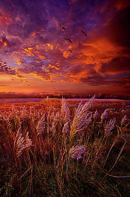 Photograph - I Spoke To God Today by Phil Koch
