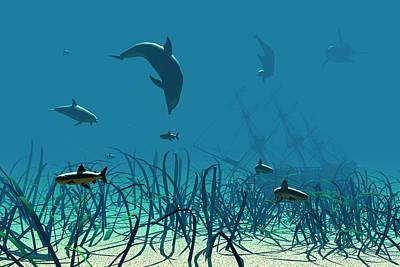 Dolphins Digital Art - I Spy by Claude McCoy