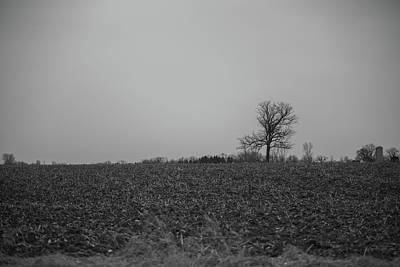 Photograph - I Stand By Myself by CJ Schmit