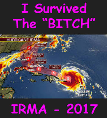 Digital Art - I Survived Irma by Lloyd Dobson