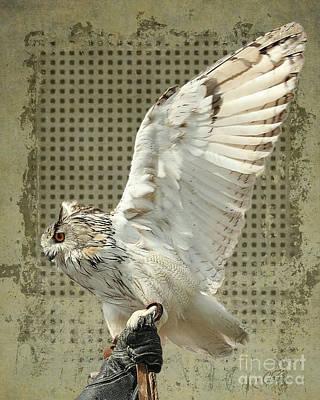 Mixed Media - I Think I Could Fly by Gabriele Pomykaj