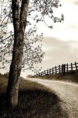 Photograph - I Walk The Gravel Road 2 by Marilyn Hunt
