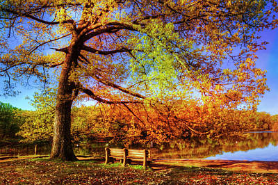 Photograph - I Will Wait For You In Fall by Debra and Dave Vanderlaan