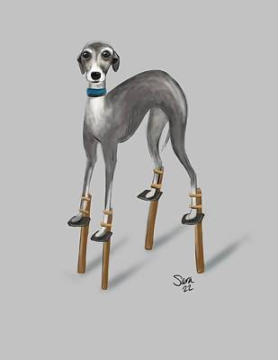 Whippet Digital Art - I Wish by Sara Henry