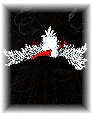 Ibis Drawing - Ibis Down by Carol Allen Anfinsen
