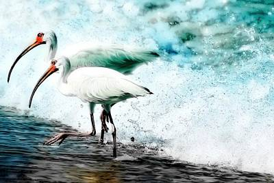 Painting - Ibis Splash by Barbara Chichester
