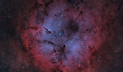 Ic 1396 Art Print by Brian Peterson