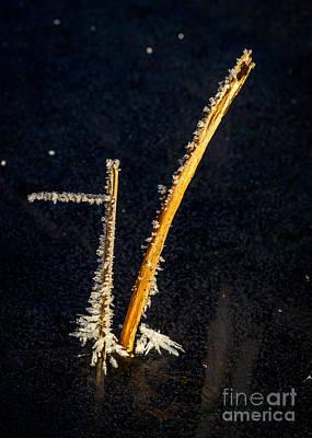 Photograph - Ice Abstract 1 by Ismo Raisanen