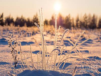 Photograph - Ice Abstract 3 by Ismo Raisanen