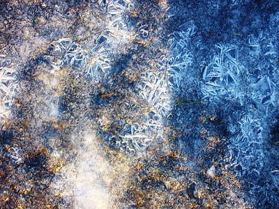Photograph - Ice Abstract 14 by Lori Kingston