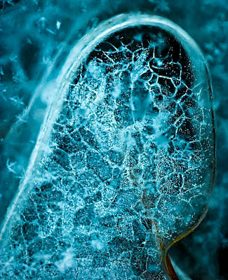 Photograph - Ice Abstract Deep Blue by  Onyonet  Photo Studios