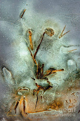Photograph - Ice Abstract by Tom Cameron