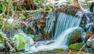 Photograph - Ice Along The Creek by Jason Brooks