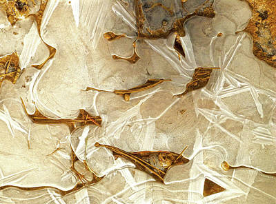 Photograph - Ice And Needles, Bryce Canyon by Amelia Racca