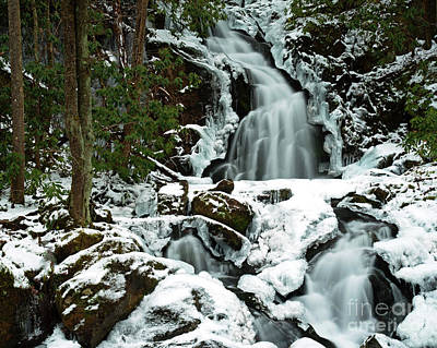 Photograph - Ice And Snow, Mouse Creek Falls, Great Smoky Mountain National Park by Schwartz Nature Images