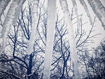 Photograph - Ice Bars by Robert Knight