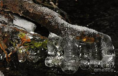 Photograph - Ice Boots by David and Lynn Keller
