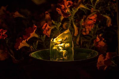 Photograph - Ice Candle With Petunias by Albert Seger