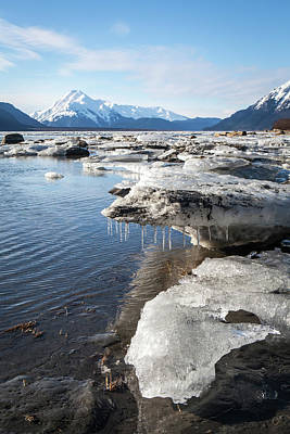 Photograph - Ice Chunks In The Chilkat Estuary by Michele Cornelius
