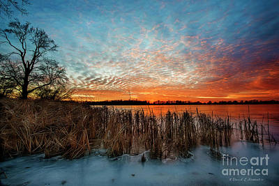 Photograph - Ice Clouds And Fire In The Sky by David Arment