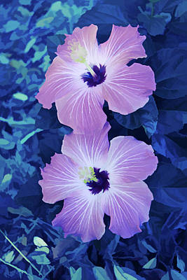 Photograph - Ice Cold Pink Hibiscus Blooms Vertical by Aimee L Maher Photography and Art Visit ALMGallerydotcom