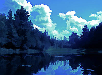 Photograph - Ice Cold Pond Reflections by Aimee L Maher Photography and Art Visit ALMGallerydotcom