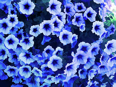 Photograph - Ice Cold Purple Petunias by Aimee L Maher Photography and Art Visit ALMGallerydotcom