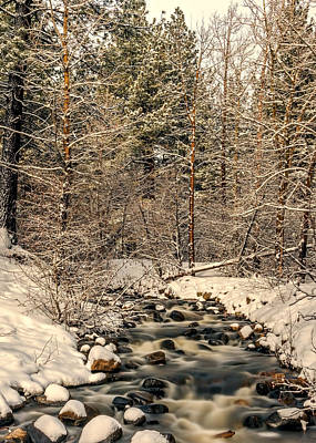 Photograph - Ice Cold Stream by Maria Coulson