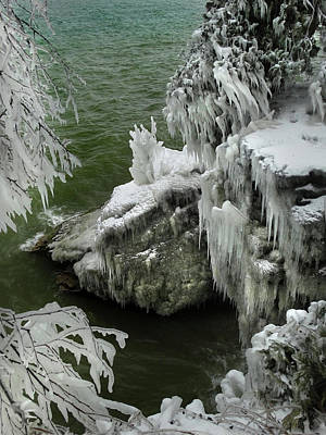 Photograph - Ice-covered Branches And Rocks by David T Wilkinson