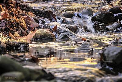 Fall Photograph - Ice Creature In The Falls by LeeAnn McLaneGoetz McLaneGoetzStudioLLCcom