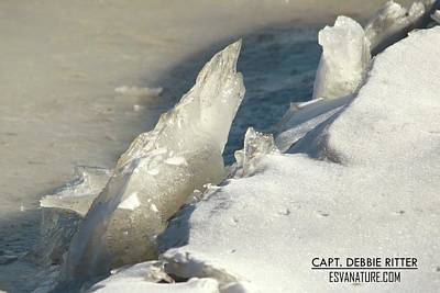 Photograph - Ice Crystal 3160 by Captain Debbie Ritter