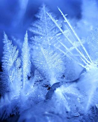 Photograph - Ice Crystals by Jeanette Fellows
