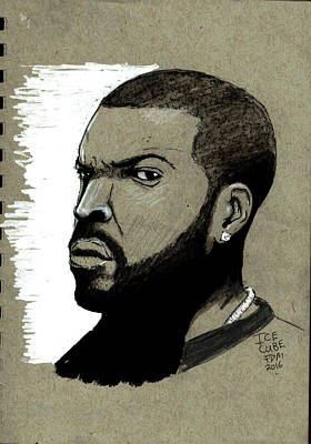 Drawing - Ice Cube by Frank Middleton