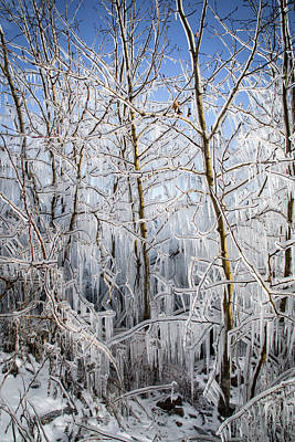 Photograph - Ice Curtain by Jill Laudenslager