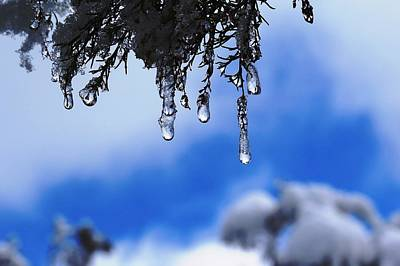 Ice Drops Art Print
