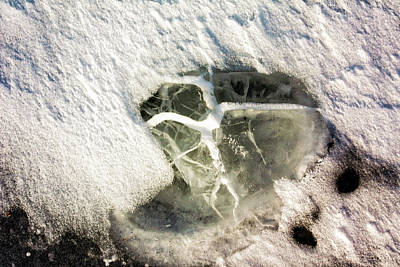 Photograph - Ice Fishing Hole 21 by Steven Ralser