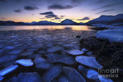 Ice Flakes Drifting Against The Sunset Art Print by Arild Heitmann
