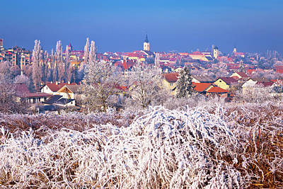 Photograph - Ice Frost Winter View Of Krizevci by Brch Photography