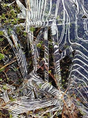 Forest Floor Photograph - Ice On Pond by Sverre Andreas Fekjan