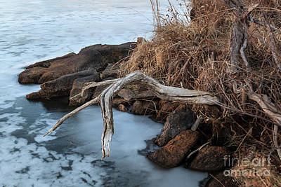Photograph - Ice On Post Oak Pake by Richard Smith