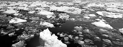 Photograph - Ice On The River March 2017 Bw by Mary Bedy