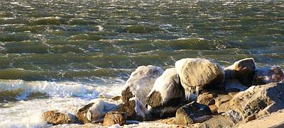 Photograph - Ice On The Rocks by Karen Silvestri